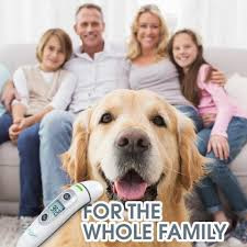 Best Thermometer for Whole Family