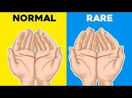 Use the rear of Your Hand, Not Your Palm